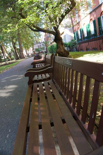 Empty bench by street in city
