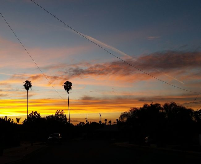 Tonights Filter Free Sky Sunset Sunset_collection Sky_collection Sky And Trees California