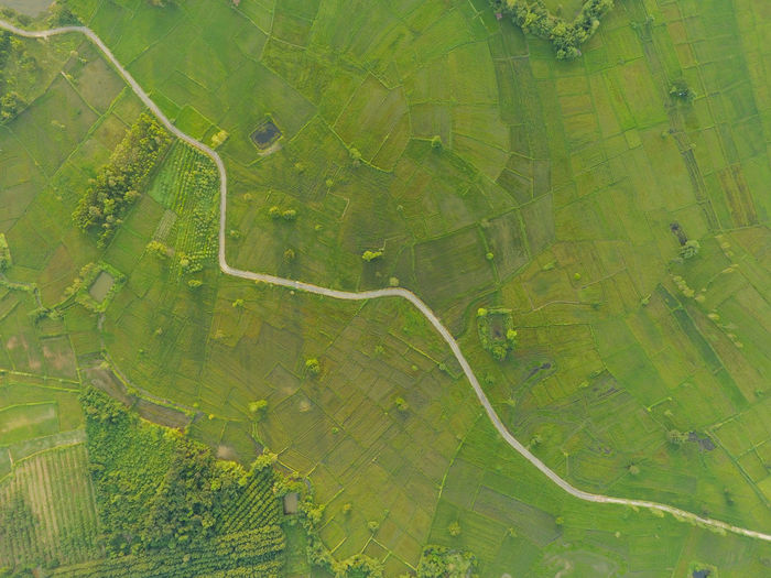 Aerial view of road amidst agricultural field