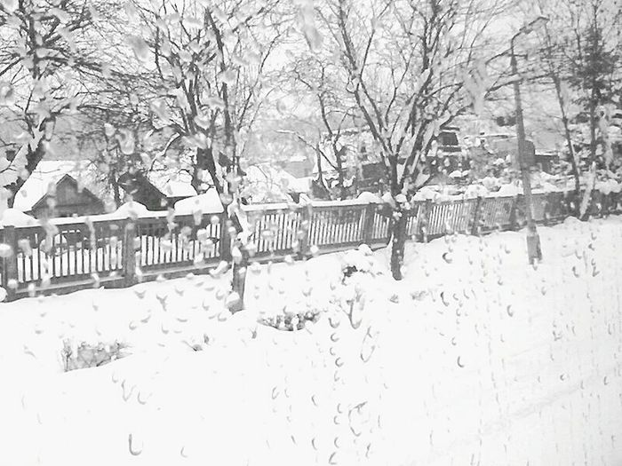 2009 Beskidy Beskid Wyspowy Old Photo Old Pic  Picture From Train Sucha Beskidzka