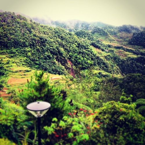 The view from Banaue Hotel Room. This is going to be an amazing New Year! Bestwaytospend2013 Goodbye2012 BanaueRiceTerraces Luzon Philippines 7WondersOfTheAncientWorld