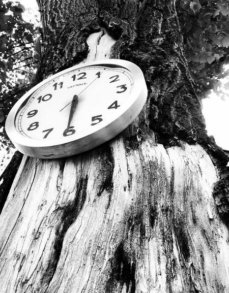 Time Clock Tower Clock Zagreb Blackandwhite Monochrome Photography