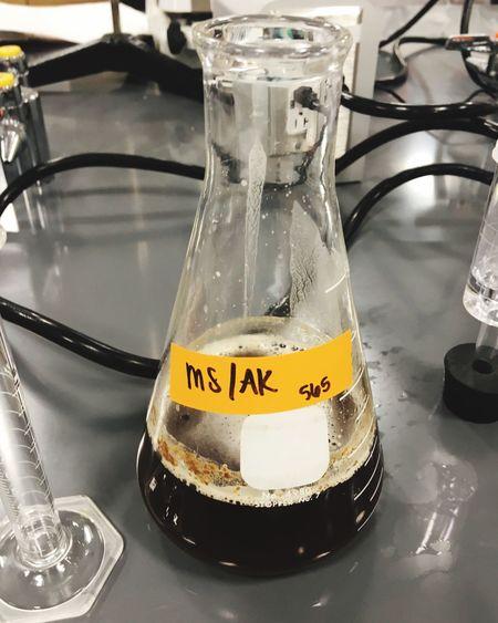 Fermentation Chemistry Brewing Beer Laboratory
