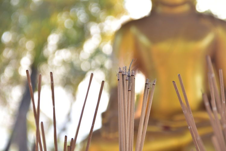 Close-Up Of Incense Sticks Against Buddha Statue