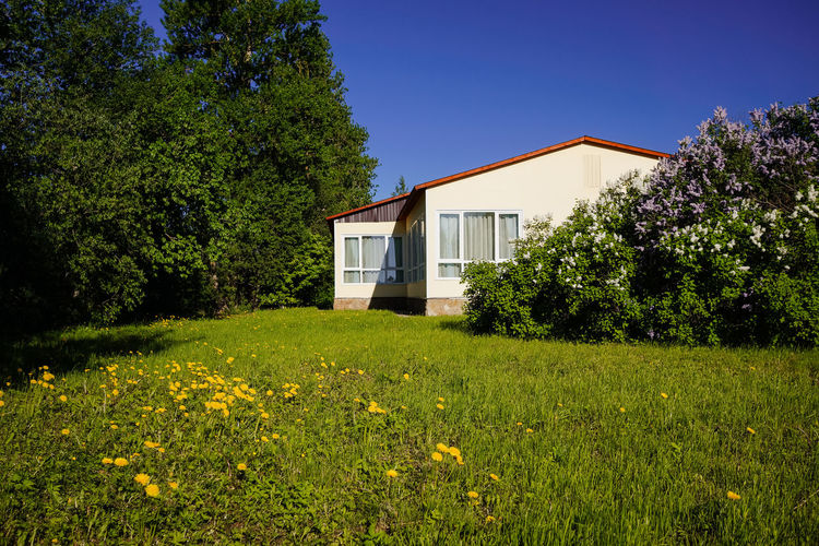 Country house in the sunny day Country Sunny Architecture Building Building Exterior Built Structure Country House Country Life Countryside Flower Flowering Plant Grass House No People Sunny Day Village Village Life