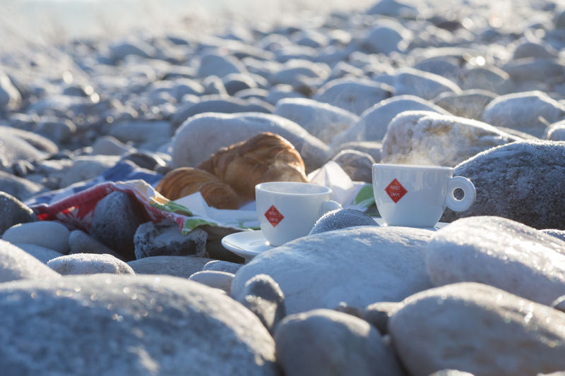 Friends Morning Light Morning Sun Piave Sunlight Treviso Animal Themes Caffè Close-up Cold Temperature Day Montello Nature Nervesa No People Outdoors Sunlight Sunrise Veneto Water