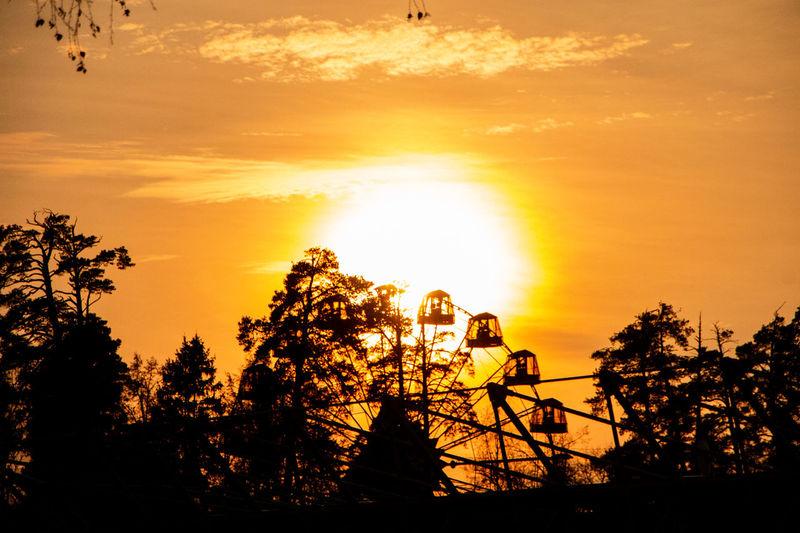 Silhouette trees against orange sky