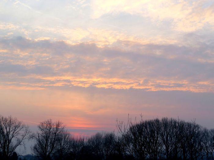 beautiful sky Wijk Bij Duurstede Wijkbijduurstede Trees Trees And Sky Antidepressants Pink Orange Sky Clouds Clouds And Sky Multi Colored Silhouette Dramatic Sky Atmospheric Mood