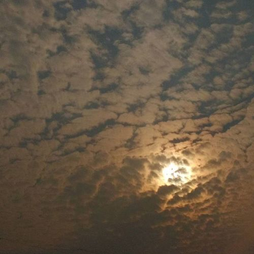 Sunday_click Eve Cosmos Nature Beauty Insta_mood Instagroove Skylovers Sky_captures .... Clk : me📷