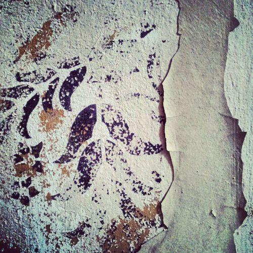 Peely Paint Urbex Lostinplace