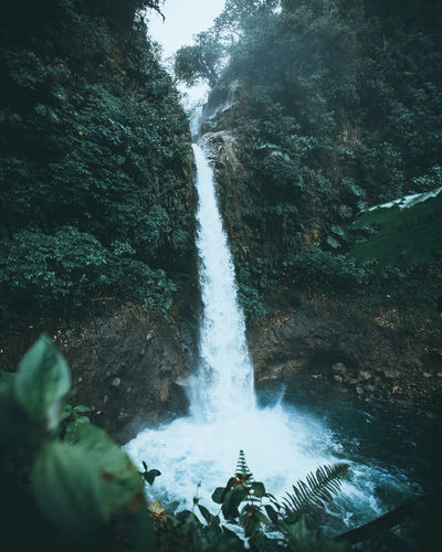Scenic view of waterfall falling from mountain in forest