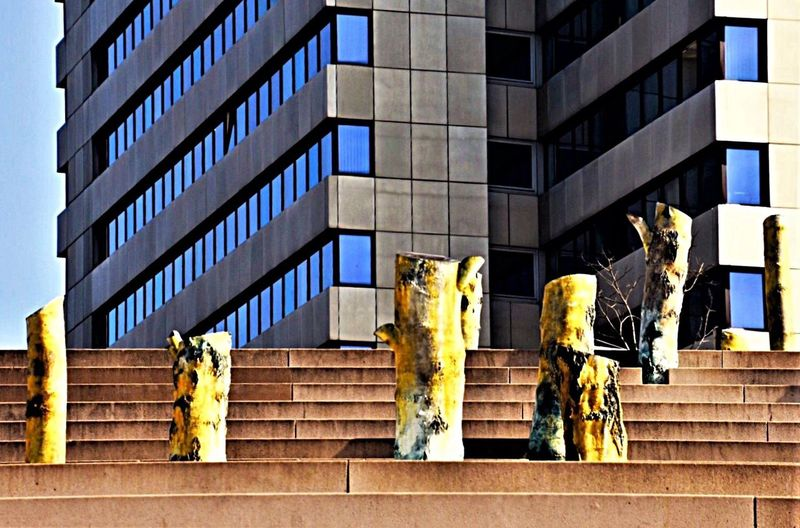 Adapted To The City Architecture Building Exterior Built Structure Birches Of Bronze Birken Aus Bronze Low Angle View No People Outdoors Statue Sculpture Day EyeEm Best Shots - Nature EyeEm Gallery Natural Beauty Memorial EyeEm Best Shots Eyem Gallery EyeEm Nature Lover Eye4photography