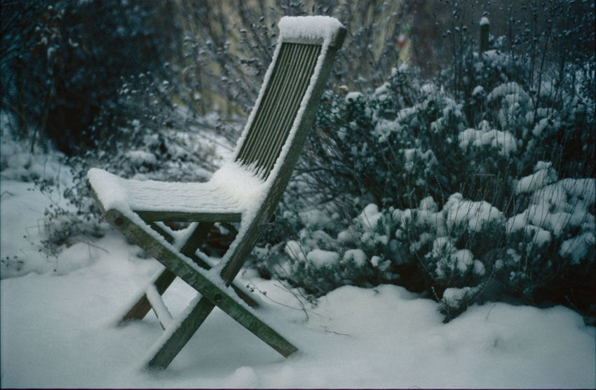 Please take a seat! Photograph (c) Kay-Christian Heine Country Gardening Lonely Rustic Snow-capped Waiting Cold Temperature Cottage Cottage Garden  Countryside Day Forlorn Frozen Garden Garden Chair Lawn Chair Leftbehind No People Outdoors Snow Snow-covered Snowflake Snowing Weather Winter