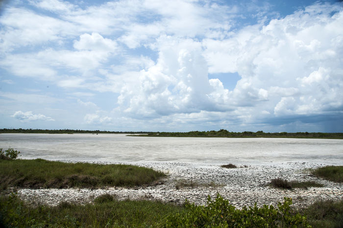Where's the water gone? Beauty In Nature Blue Calm Cloud Cloud - Sky Cloudscape Cloudy Cumulus Cloud Day Low Tide, Dry River Bed Majestic Nature No People Non-urban Scene Outdoors Scenics Sky Tranquil Scene Tranquility Water