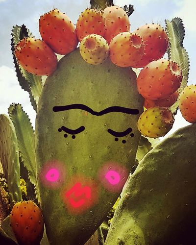 Frida style Mexico Frida Kahlo Art is Everywhere Art, Drawing, Creativity Creativity Portrait Photography EyeEm Selects Portrait Summertime Week On Eyeem Flower Close-up Prickly Pear Cactus Blooming Cactus Plant Life Needle - Plant Part A New Perspective On Life