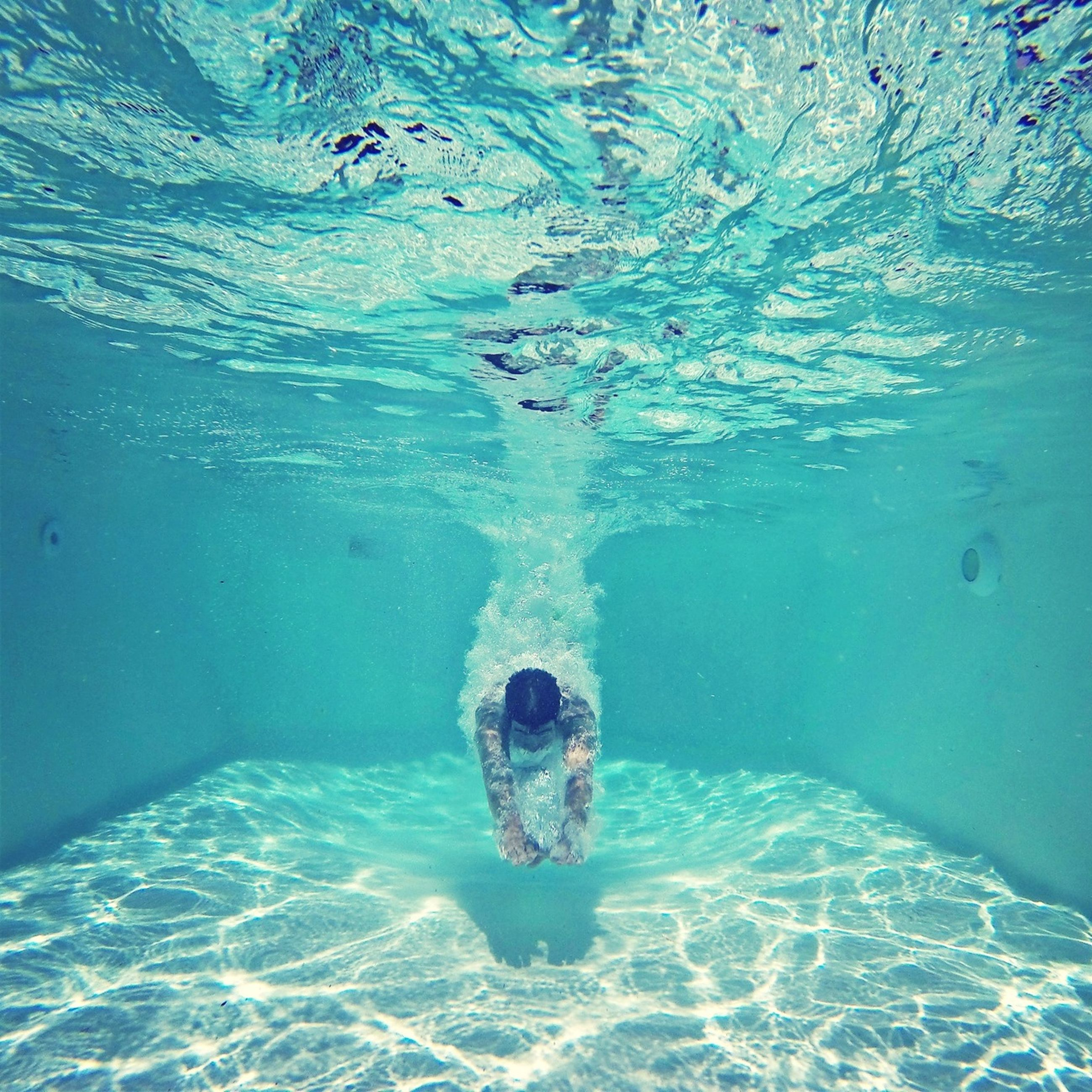 water, blue, swimming, high angle view, swimming pool, underwater, waterfront, turquoise colored, sea, animal themes, one animal, leisure activity, full length, day, rippled, nature, lifestyles, outdoors