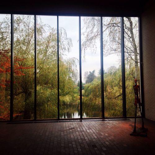 Autumn Art View