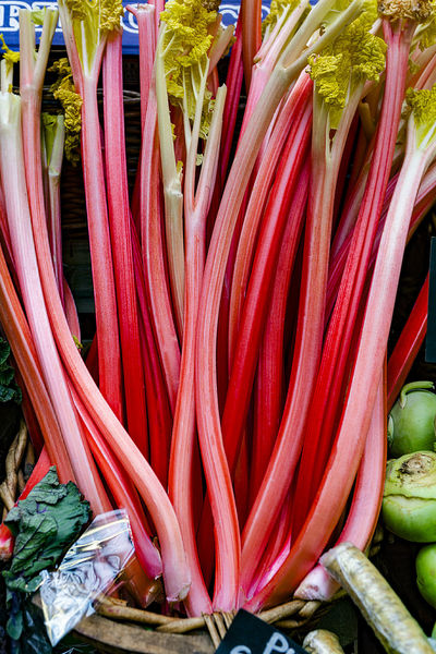 Red Rhubarb Close-up Day Food Food And Drink Freshness Healthy Eating No People Outdoors Rhubarb Vegetable