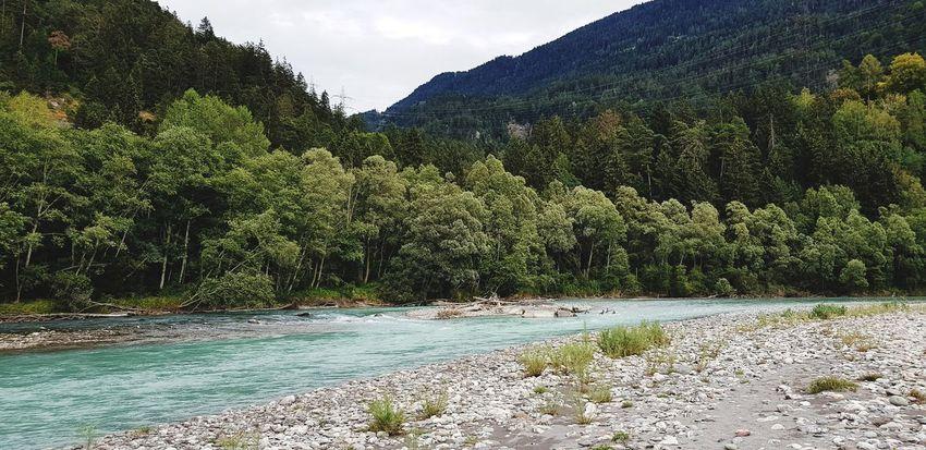 No People Outdoor Photography River Rhein Stones & Water Tree Mountain Water Sky Landscape Plant Riverbank Riverside