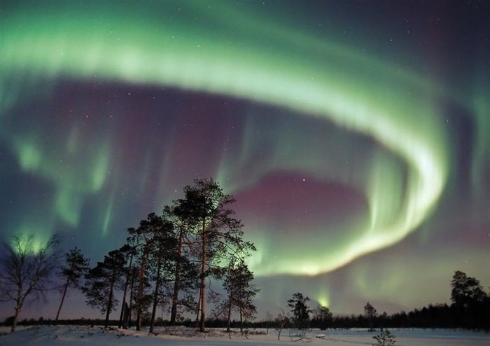 Aurora Borealis Hiver Froid Nuit Nature