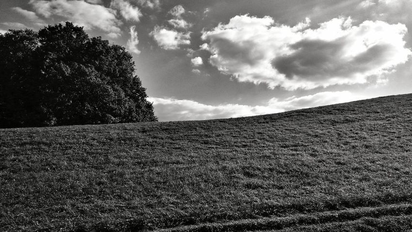 Hill EyeEm Man Black And White Blackandwhite Photography Tree Sky Cloud - Sky Calm Outline