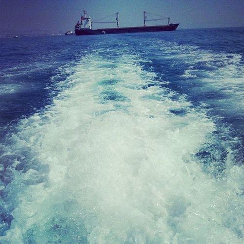 Istanbul Instaturkey Deniz Sea marmara sahil hayatim yolculuk elveda