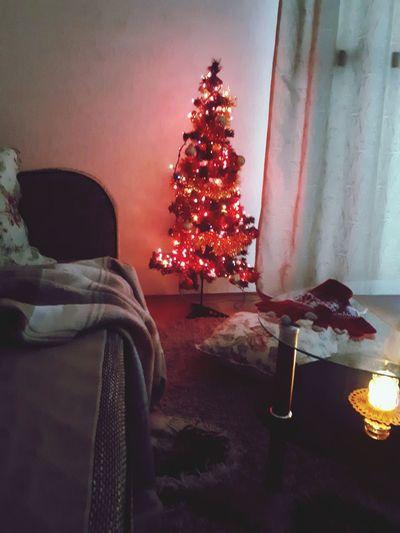 Christmas Christmas Tree Christmas Decoration Tree Indoors  Celebration Tradition