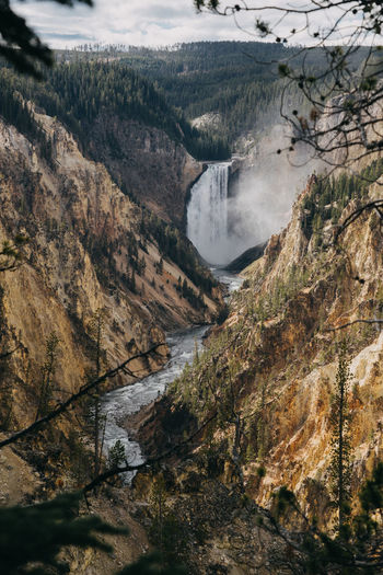 Yellowstone Yellowstone National Park Beauty In Nature Yellowstone Canyon Waterfall River Water Wyoming Wyoming Landscape Scenics - Nature Tree Mountain Nature Environment Plant Day Landscape No People Tranquil Scene Tranquility Non-urban Scene Land Outdoors Motion Flowing Water Power In Nature Sky