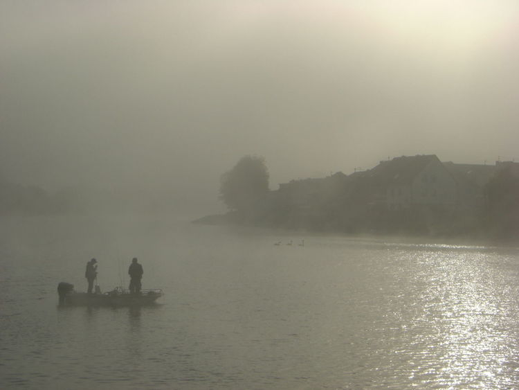 Nofilter River Water Sun Fishing Morning Light Fishermen Sunrise Blackandwhite Black And White Swans Fog Silhouette Germany Fisherman Mist Early Fishing Boat Luxembourg Haze Border Rise Wasserbillig Oberbillig Foggy