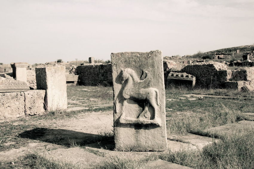 Archeological Complex Archeology History Memories Monochrome No People Stone - Object Stone Material The Past Thuburbo Majus Travel Destinations Tunisia