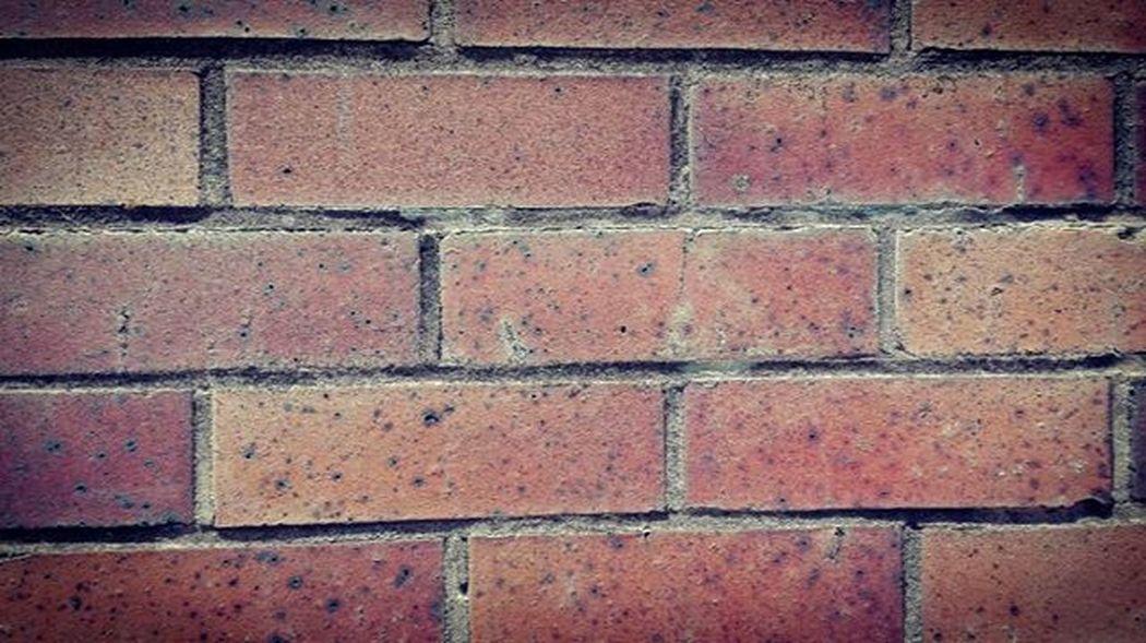 Brick Wall Texture Petone Wellington  NZ Newzealand Aotearoa Minimalint Ptk_minimal