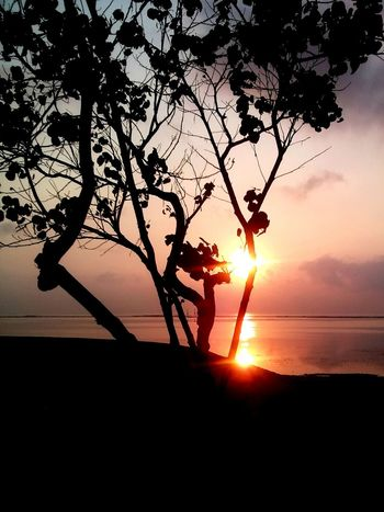 Goodmorning EyeEm  Beautiful Nature Life Is A Beach Relaxing Hello World Enjoying Life Peace And Quiet EyeEm Indonesia Nature_collection Sunrise