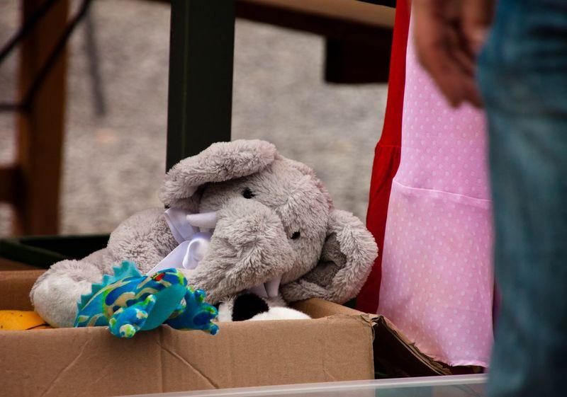 Market Streetphotography Fleamarket Elephant Toy Elephant Teddybear Teddy Elephant In Box Toy In A Box Teddy In Box Street Life