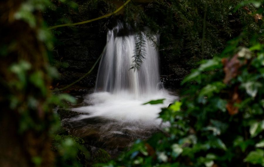 water splash Streamzoofamily England Sculpturepark Nature Waterfall Long Exposure