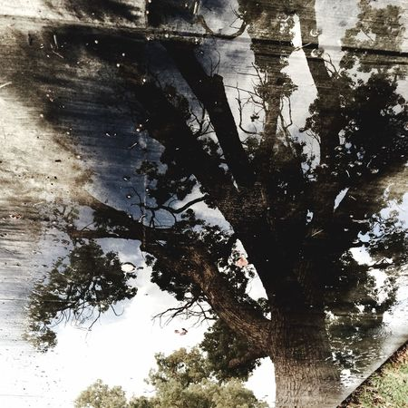Sidewalk Water Reflection