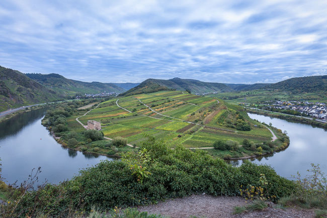 Moselle river, ediger-eller germany Beauty In Nature Cloud - Sky Day Green Color Hills Idyllic Landscape Moselle River Moselle Valley Mountain Mountain Range Nature No People Non-urban Scene Outdoors River Scenics Sky Tranquil Scene Tranquility Tree Water