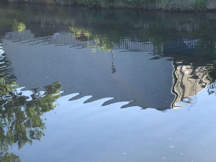 Day Lake Nature