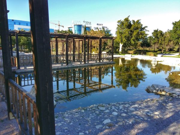 Park Tree Tree Reflection Water Architecture Built Structure Sky Outdoors Day Wood - Material Tunis Tunisia