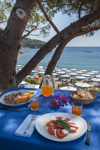 Food And Drink Food Water Freshness Table Ready-to-eat Healthy Eating Plant Nature Tree Sea Trunk Tree Trunk No People Plate Drink Beach Day Wellbeing Glass Outdoors Meal Setting Breakfast