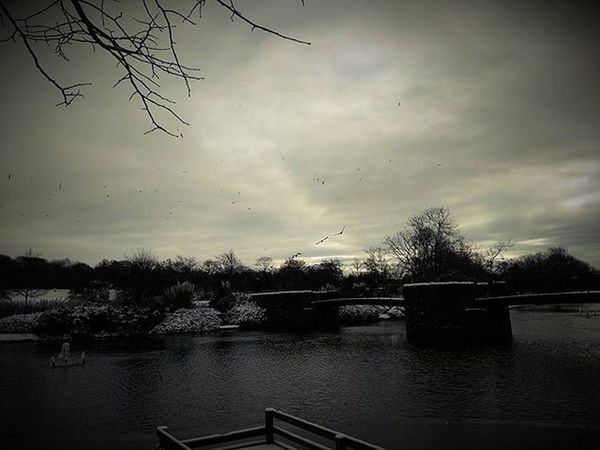 Winter sky over Alexandra Park, Oldham Igerslancashire