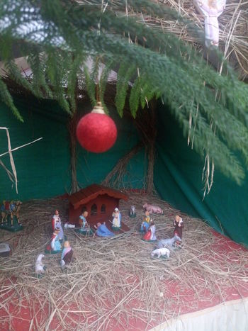 Celebration Christmas Collection Christmas Decoration Christmas Ornament Christmas Tree Crib Hanging Merry Christmas Merry Christmas Eve! Merry Christmas! Nativity Church Nativity Figurine Nativity Scene Night No People Outdoors Traveling Home For The Holidays Tree