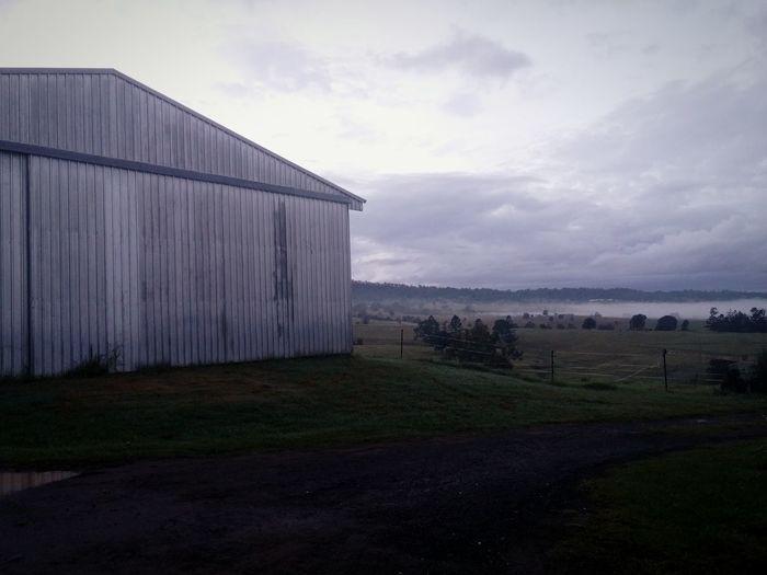 Fog Mornings Peaceful