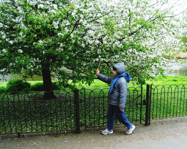 London Lifestyle Full Length Tree Nature Growth Adults Only One Person Adult Men People Outdoors Senior Men One Man Only Only Men Day Community Outreach London Eye4photography  Weekend Activities Childhood Leisure Activity Nature