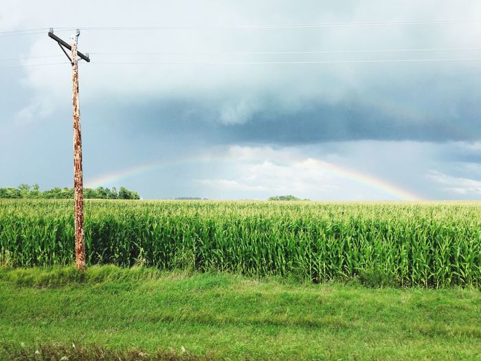 Rainbow before the storm near Gibbon,MN. Showcase July Minnesota Nature Nature Rainbow Outdoors Beauty In Nature Idyllic Farm Life Corn Field Gibbon Mn The Great Outdoors - 2017 EyeEm Awards Lost In The Landscape An Eye For Travel