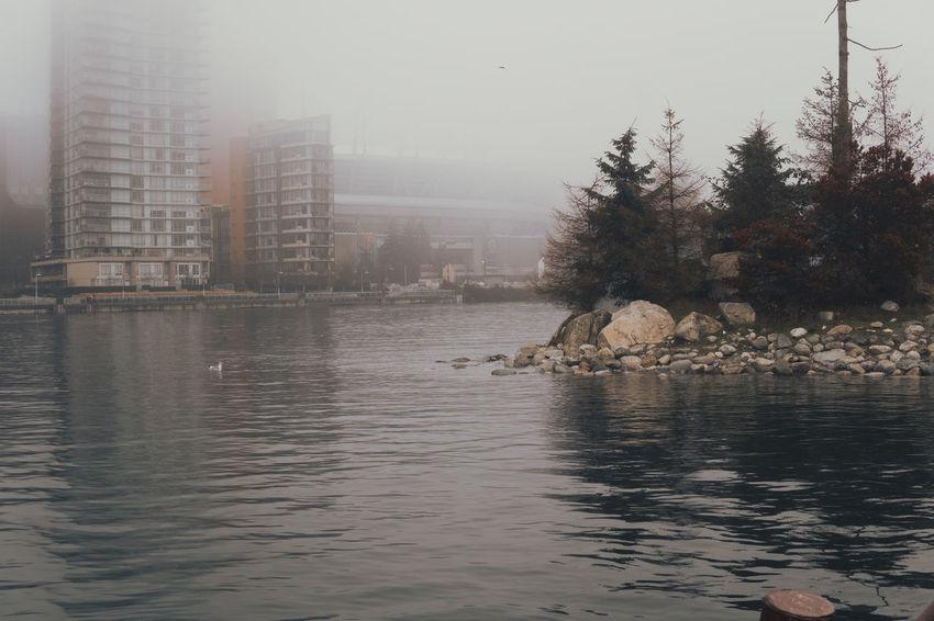Calm Dark Water Quiet Barren Hazy  Lone Figure Minimal Moody Mystery No People Ocean Outdoors Reflection Water Waterfront