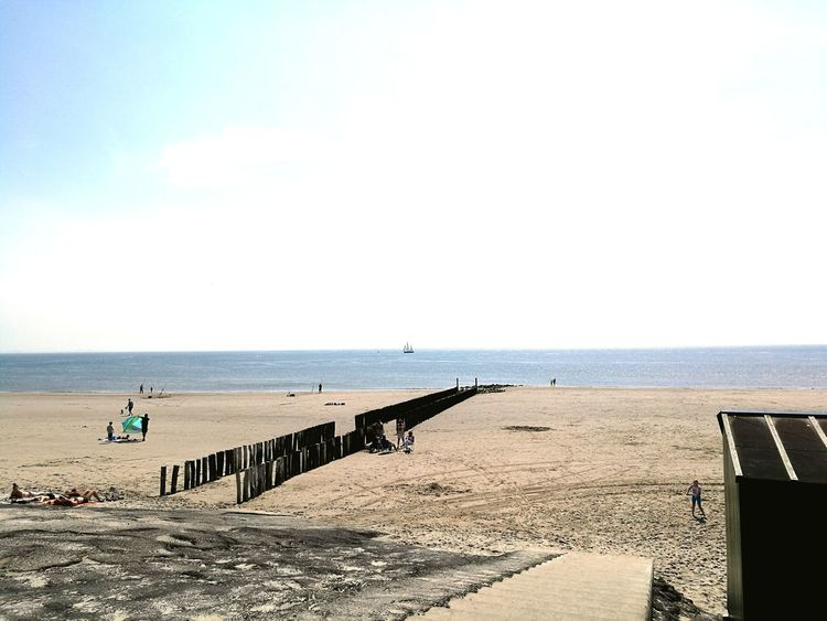 Water Sea Beach Clear Sky Sand Full Length Summer Incidental People Sunlight Bird
