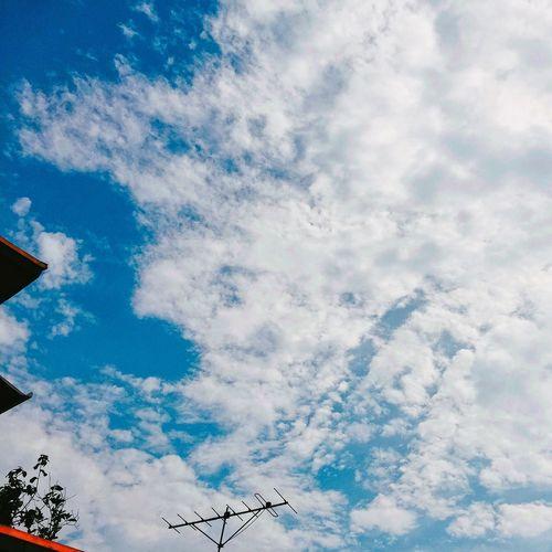 IPhone Blue Sky