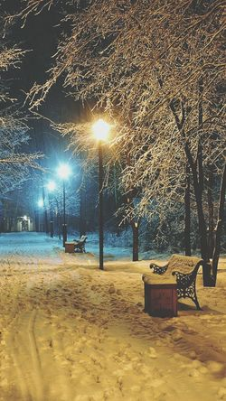 Winter Tree Street Light City Outdoors Illuminated Nature Snow No People Night Winter Beach Sky Architecture Abstract City Motion Model Day Exploding Beauty Transportation Nature Photography First Eyeem Photo Phorographer