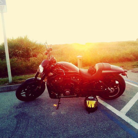 Harley Sunset Harley Davidson Motorcycle Vintage Emotion Sunset Outdoors