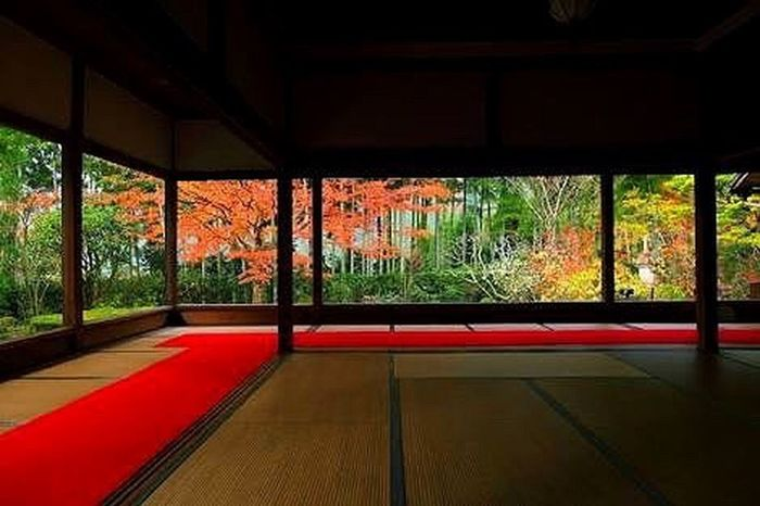 Autumn Leaves Autumn Colors Fall Beauty Fall Colors Colorful Temple Kyoto Japan Red